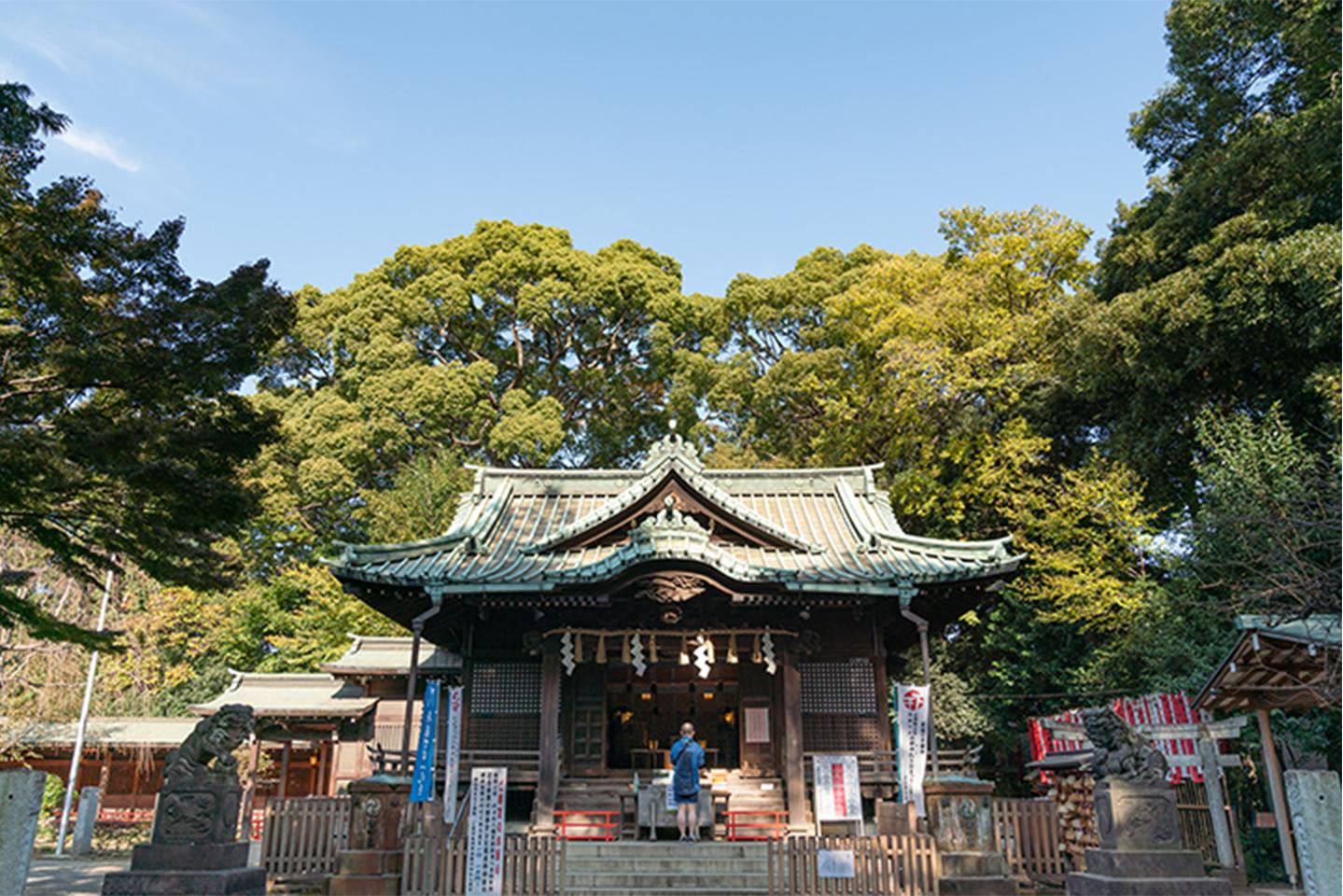 代々木八幡宮(東京都渋谷区)