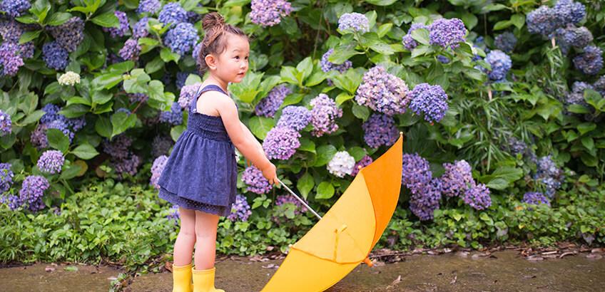 梅雨時のレジャーやロケーションフォトに! 首都圏の紫陽花の名所6選